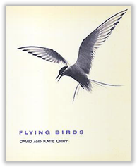 Flying Birds book cover